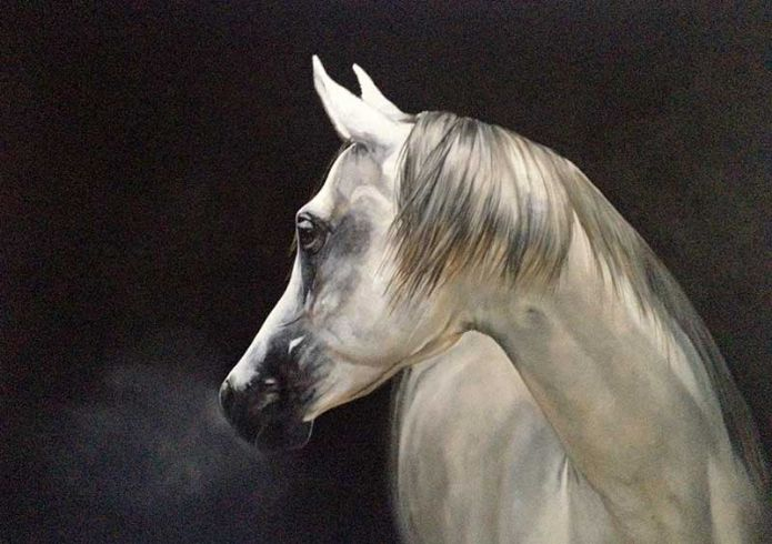 'Stag and Stallion' by Tony O�Connor 2014